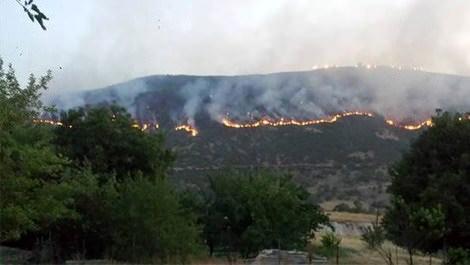 bingöl orman yangı