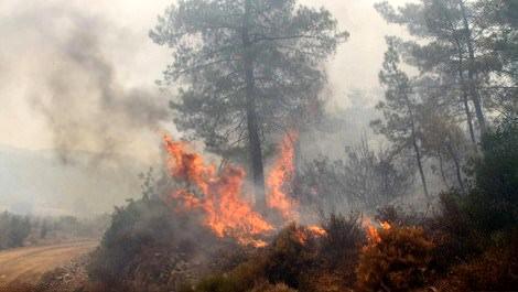 Muğla Köyceğiz'deki orman yangınında alevler yükselirken