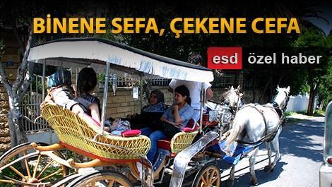 'Elektrikli fayton Büyükada'yı bozar'