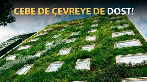 Yeşil bina trendi hızla yayılıyor
