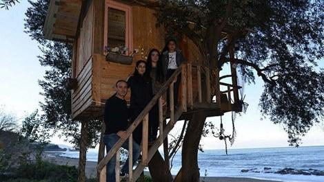 Ağaçların arasına ahşaptan ev yaptı