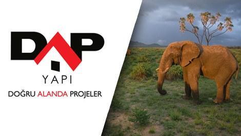 DAP Yapı, Afrika'yı satış ofisine taşıyor