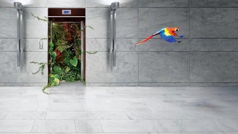 Yeni nesil asansörler enerjide yüzde 75 tasarruf sağlıyor!