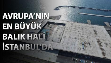 İstanbul Su Ürünleri Hali havadan görüntüsü
