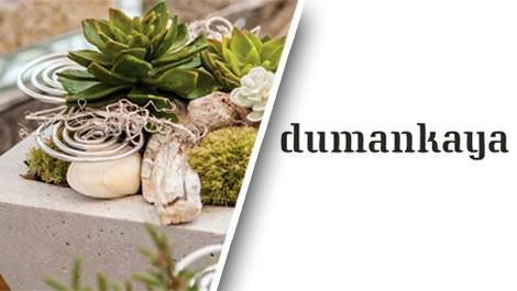 Dumankaya ile bitki düzenleme sanatı!