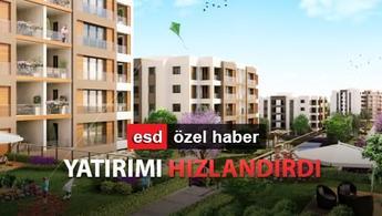 Vira İstanbul'dan sonra yeni projeler yolda!