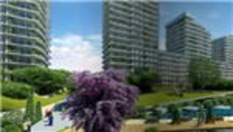 Batışehir'in web sitesi Altın Örümcek finalinde!