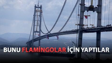 Osman Gazi Köprüsü'nde dikkat çeken ayrıntı
