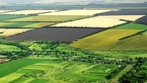 vergisiz miras arazisi