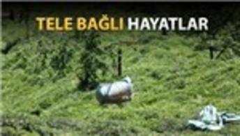 İlkel teleferikler Karadeniz halkının vazgeçilmezi!