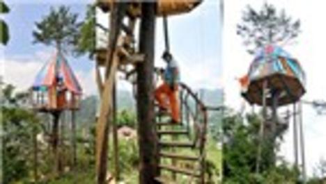 Çam ağacının gövdesine 360 derecelik ev!