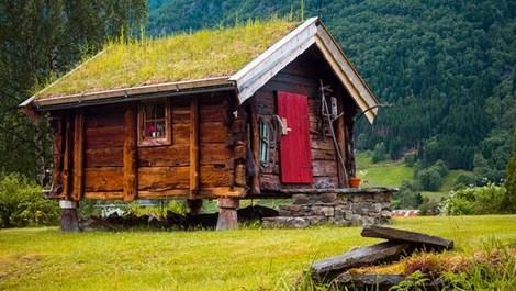 Masal diyarı gibi görünen 'yaşayan çatılı' evler