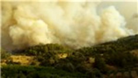 Antalya Kumluca'da orman yangını!