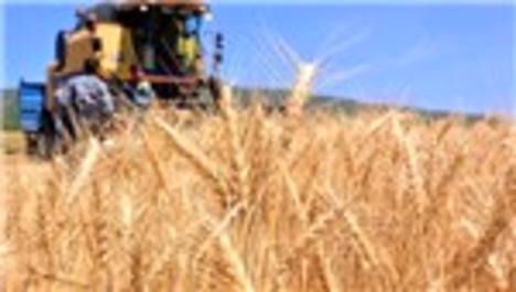 İran Irak'a tarım arazisi kiralıyor