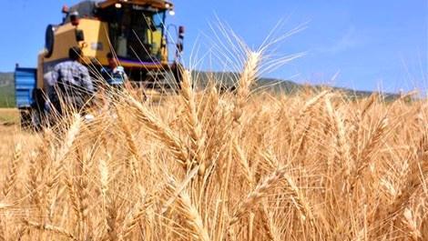 tarım arazisi