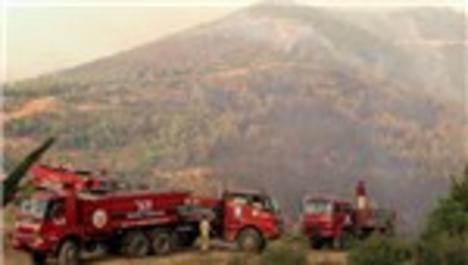 Seferihisar'daki 60 hektarlık alanda orman yangını