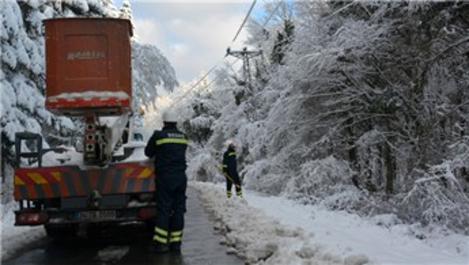 BEDAŞ, kış bastırmadan 1.289 personeliyle sahaya indi!