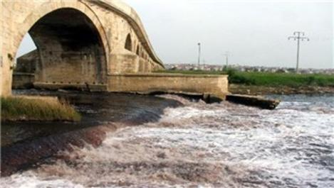 Ergene Nehri, kirlilik nedeniyle yaşam savaşı veriyor!