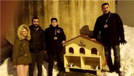Üsküdar'da yıkılan kedi evi yerine yenisi yerleştirildi