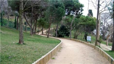 İBB: Maçka Parkı'nda ağaç kesilmesi sözkonusu değil!