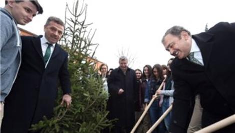 Bakan Veysel Eroğlu, Gaziosmapaşa'da fidan dağıttı
