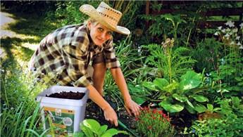 Yaz gelmeden bahçe bakımınızı yaptırın!