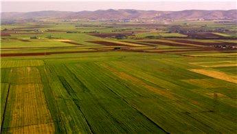 Özelmacıklı: Tarım arazilerinde şufa (önalım) bilinmiyor