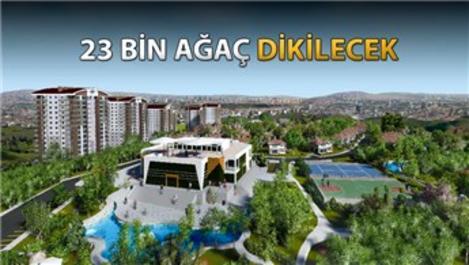 Mebuskent'te hane başına 25 ağaç düşecek