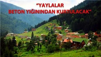 TOKİ, Ayder Yaylası'ndaki dönüşümde tek yetkili oldu!