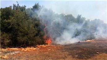 Antalya'daki yangın bölgesinde evler boşaltıldı