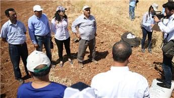 Harran Üniversitesi, öğrencilere birer dönümlük arazi kiraladı