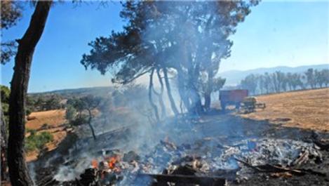 Çanakkale'de tarım arazisinde yangın çıktı