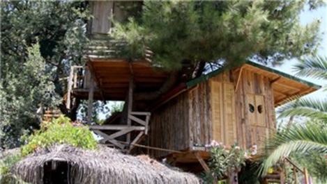Muğla'da ağaçların arasına ev inşa edildi