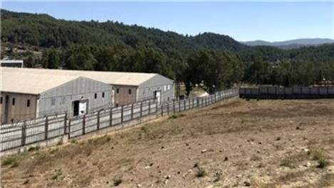 Bayırbucak Türkmenleri için Hatay'da konteyner kent kurulacak