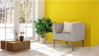 DYO'nun yeni renk kartelasında doğal renkler ön planda!
