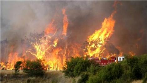 Avustralya'daki yangında 5 ev kül oldu!