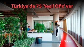 Yeşil Ofis'te A4 tasarrufu 4 katlı bir apartmana denk!