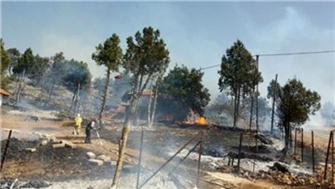 Balıkesir'de yangın ormana sıçradı