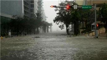 'Miami'de evlerimizin önünde balıklar yüzüyor'