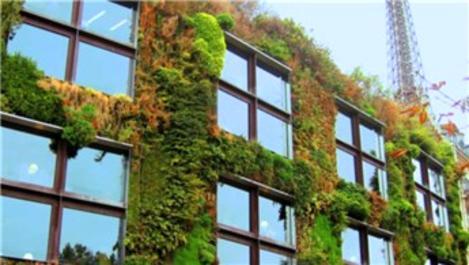 İklim değişikliğiyle mücadele için proje hazırlandı