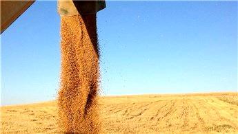 Arazi bankacılığı ile atıl araziler üretim kazandırılacak