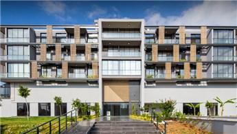 Slash Architects, ahşabın dokusunu Perspective Ofis'e yansıttı