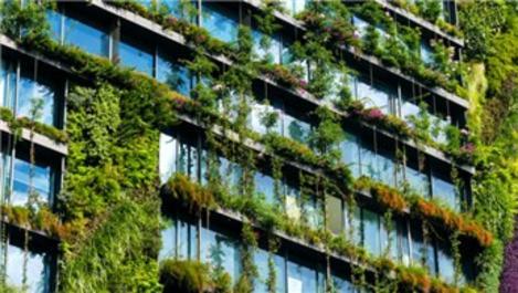 Enerji Kimlik Belgesi verilen bina sayısı artıyor