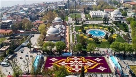 Dünyanın en büyük canlı lale halısı Sultanahmet'te görücüye çıktı