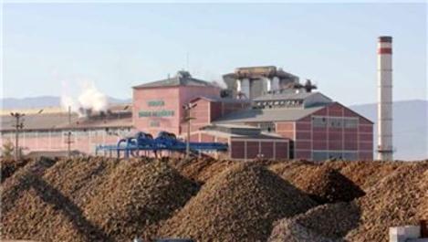 Erzurum ve Erzincan şeker fabrikası yeniden ihaleye çıkıyor