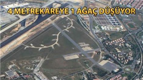 Havalimanı arazisine 3 milyon ağaç dikilebilecek