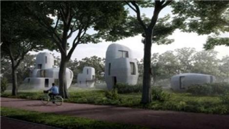 Dünyanın ilk yaşanabilir 3 boyutlu baskı evleri yapılıyor