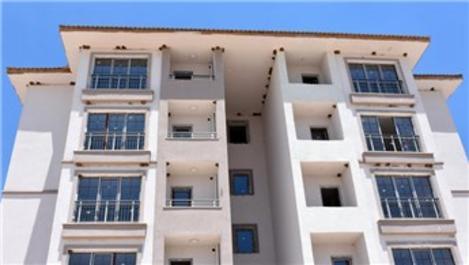 Adıyaman'da TOKİ inşaatındaki kırlangıç molası sürüyor