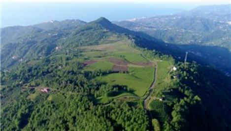 Dağın zirvesinde kurulacak olan OSB'yi tanıttılar