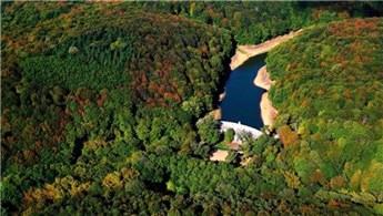Kemerburgaz'a dev kent ormanı kuruluyor